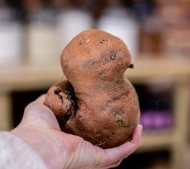 SVSG- Bel go Bio-patate douce